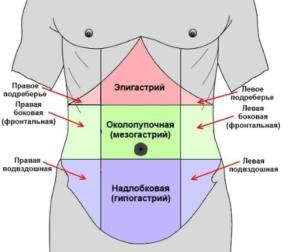 органы эпигастрия